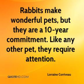 Lorraine Corriveau  - Rabbits make wonderful pets, but they are a 10-year commitment. Like any other pet, they require attention.