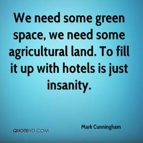 Mark Cunningham  - We need some green space, we need some agricultural land. To fill it up with hotels is just insanity.