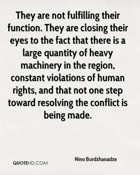 Nino Burdzhanadze  - They are not fulfilling their function. They are closing their eyes to the fact that there is a large quantity of heavy machinery in the region, constant violations of human rights, and that not one step toward resolving the conflict is being made.