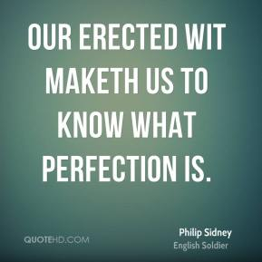 Our erected wit maketh us to know what perfection is.