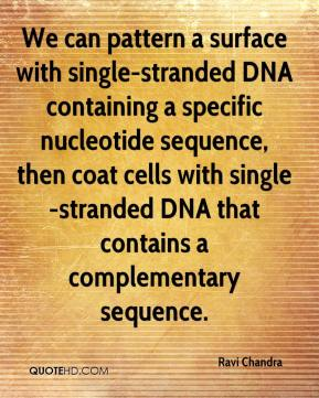 Ravi Chandra  - We can pattern a surface with single-stranded DNA containing a specific nucleotide sequence, then coat cells with single-stranded DNA that contains a complementary sequence.