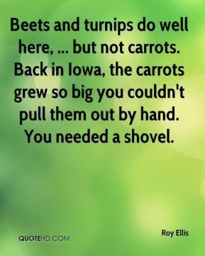 Roy Ellis  - Beets and turnips do well here, ... but not carrots. Back in Iowa, the carrots grew so big you couldn't pull them out by hand. You needed a shovel.