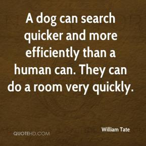 William Tate  - A dog can search quicker and more efficiently than a human can. They can do a room very quickly.