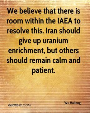Wu Hailong  - We believe that there is room within the IAEA to resolve this. Iran should give up uranium enrichment, but others should remain calm and patient.