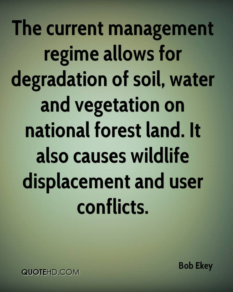 The current management regime allows for degradation of soil, water and vegetation on national forest land. It also causes wildlife displacement and user conflicts.