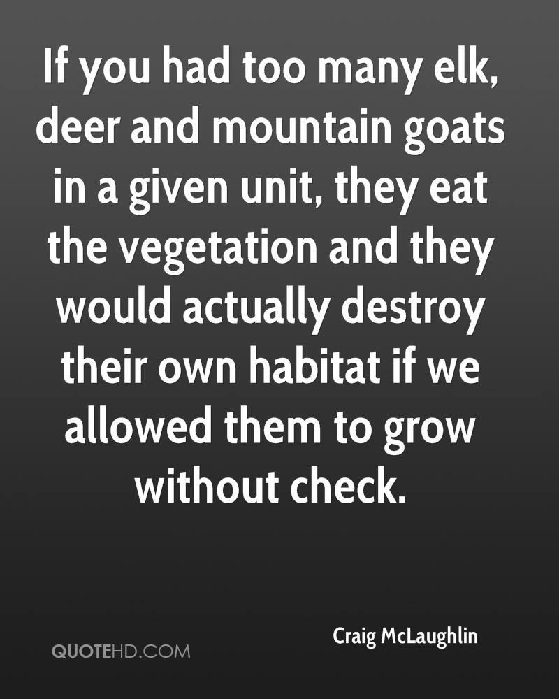 If you had too many elk, deer and mountain goats in a given unit, they eat the vegetation and they would actually destroy their own habitat if we allowed them to grow without check.