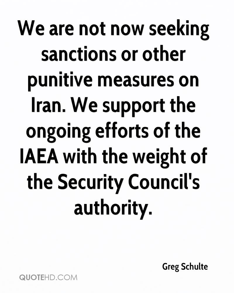 We are not now seeking sanctions or other punitive measures on Iran. We support the ongoing efforts of the IAEA with the weight of the Security Council's authority.