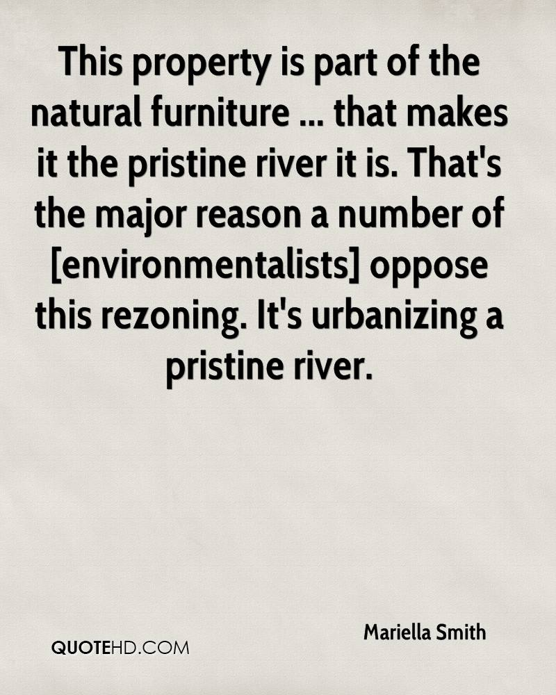 This property is part of the natural furniture ... that makes it the pristine river it is. That's the major reason a number of [environmentalists] oppose this rezoning. It's urbanizing a pristine river.