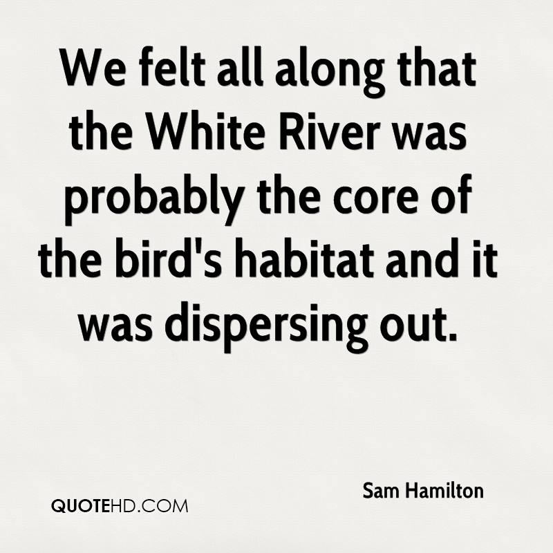 We felt all along that the White River was probably the core of the bird's habitat and it was dispersing out.