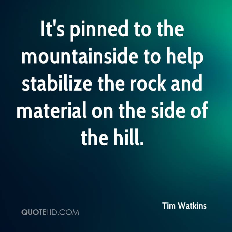 It's pinned to the mountainside to help stabilize the rock and material on the side of the hill.