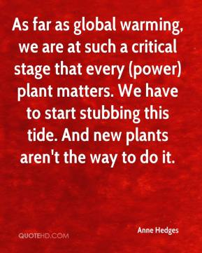 Anne Hedges - As far as global warming, we are at such a critical stage that every (power) plant matters. We have to start stubbing this tide. And new plants aren't the way to do it.