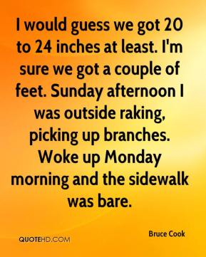 I would guess we got 20 to 24 inches at least. I'm sure we got a couple of feet. Sunday afternoon I was outside raking, picking up branches. Woke up Monday morning and the sidewalk was bare.