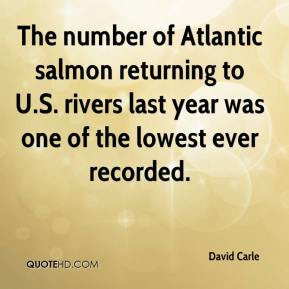 The number of Atlantic salmon returning to U.S. rivers last year was one of the lowest ever recorded.