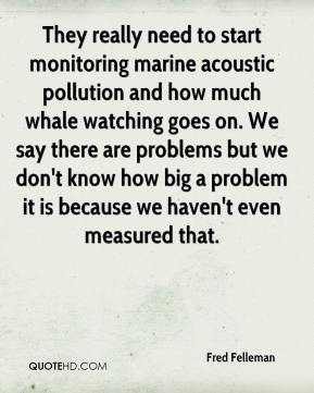 Fred Felleman - They really need to start monitoring marine acoustic pollution and how much whale watching goes on. We say there are problems but we don't know how big a problem it is because we haven't even measured that.