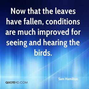Now that the leaves have fallen, conditions are much improved for seeing and hearing the birds.