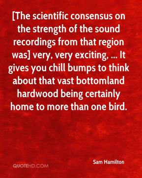 [The scientific consensus on the strength of the sound recordings from that region was] very, very exciting, ... It gives you chill bumps to think about that vast bottomland hardwood being certainly home to more than one bird.