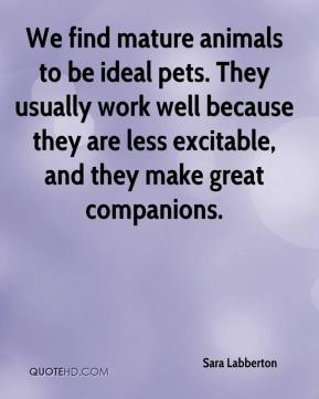 Sara Labberton  - We find mature animals to be ideal pets. They usually work well because they are less excitable, and they make great companions.