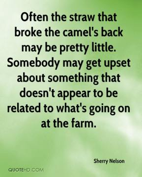 Often the straw that broke the camel's back may be pretty little. Somebody may get upset about something that doesn't appear to be related to what's going on at the farm.
