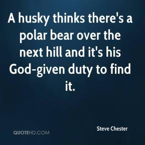 Steve Chester  - A husky thinks there's a polar bear over the next hill and it's his God-given duty to find it.