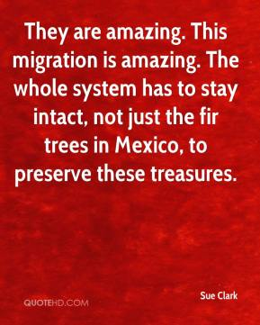 Sue Clark  - They are amazing. This migration is amazing. The whole system has to stay intact, not just the fir trees in Mexico, to preserve these treasures.