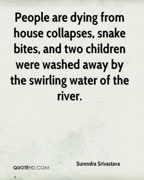 Surendra Srivastava  - People are dying from house collapses, snake bites, and two children were washed away by the swirling water of the river.