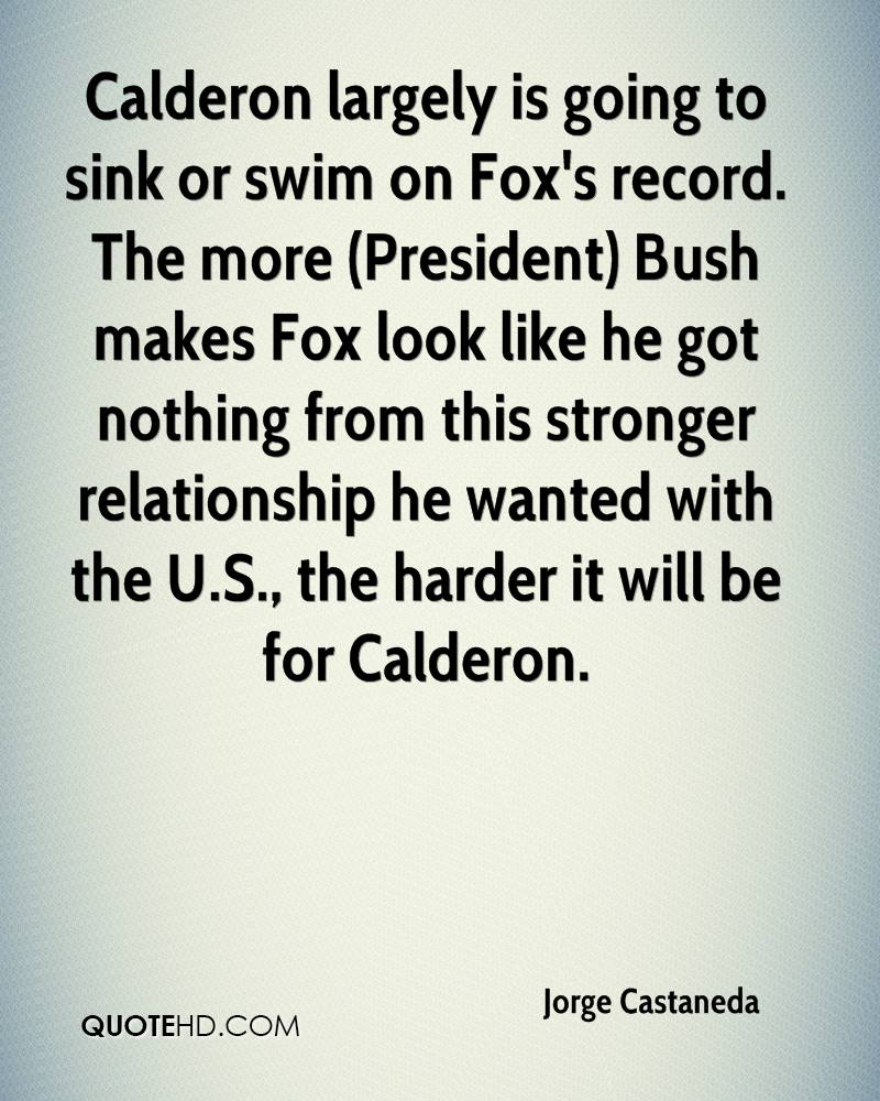 Calderon largely is going to sink or swim on Fox's record. The more (President) Bush makes Fox look like he got nothing from this stronger relationship he wanted with the U.S., the harder it will be for Calderon.