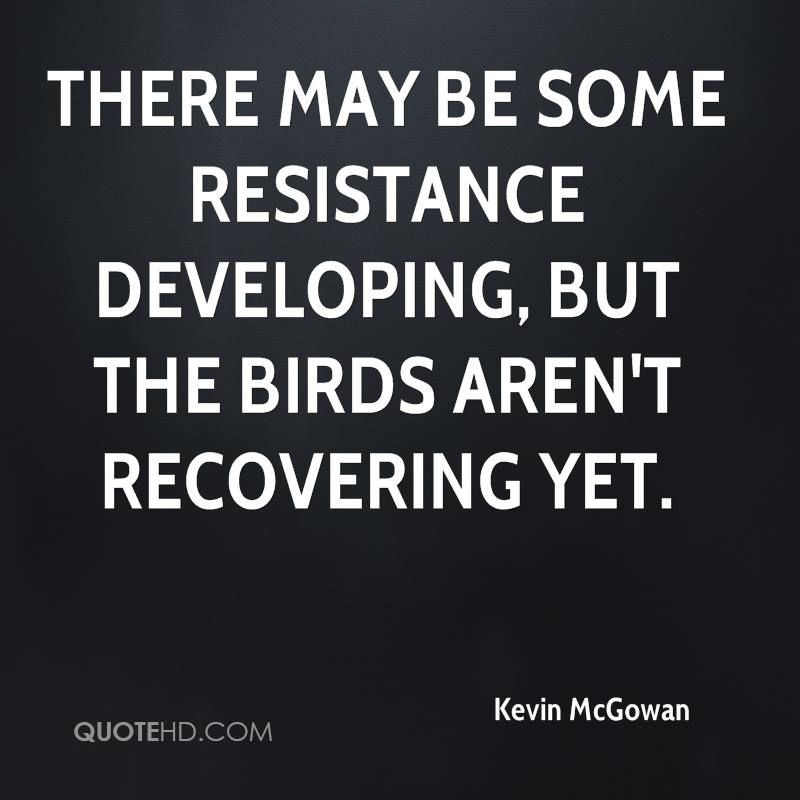 There may be some resistance developing, but the birds aren't recovering yet.