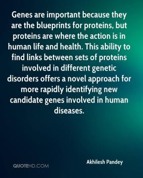 Akhilesh Pandey - Genes are important because they are the blueprints for proteins, but proteins are where the action is in human life and health. This ability to find links between sets of proteins involved in different genetic disorders offers a novel approach for more rapidly identifying new candidate genes involved in human diseases.