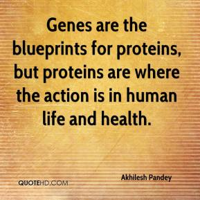 Akhilesh Pandey - Genes are the blueprints for proteins, but proteins are where the action is in human life and health.