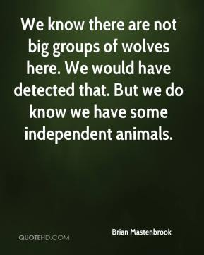 Brian Mastenbrook - We know there are not big groups of wolves here. We would have detected that. But we do know we have some independent animals.