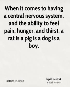 Ingrid Newkirk - When it comes to having a central nervous system, and the ability to feel pain, hunger, and thirst, a rat is a pig is a dog is a boy.