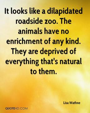 Lisa Wathne  - It looks like a dilapidated roadside zoo. The animals have no enrichment of any kind. They are deprived of everything that's natural to them.