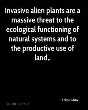 Invasive alien plants are a massive threat to the ecological functioning of natural systems and to the productive use of land.