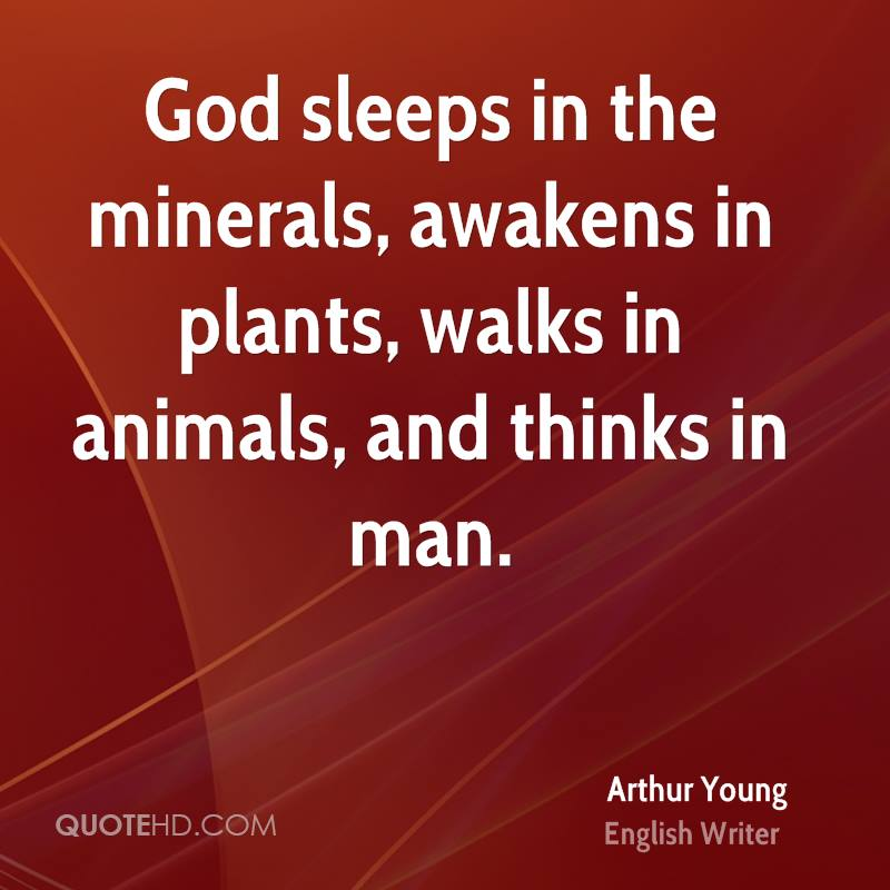 God sleeps in the minerals, awakens in plants, walks in animals, and thinks in man.