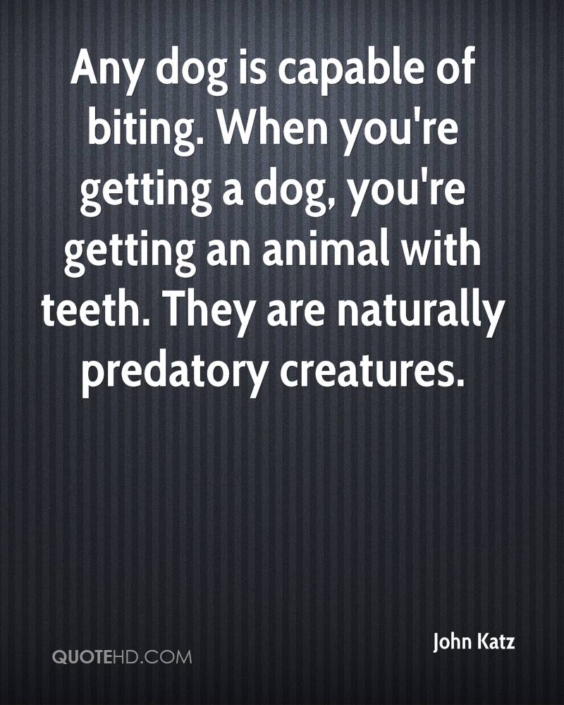 Any dog is capable of biting. When you're getting a dog, you're getting an animal with teeth. They are naturally predatory creatures.