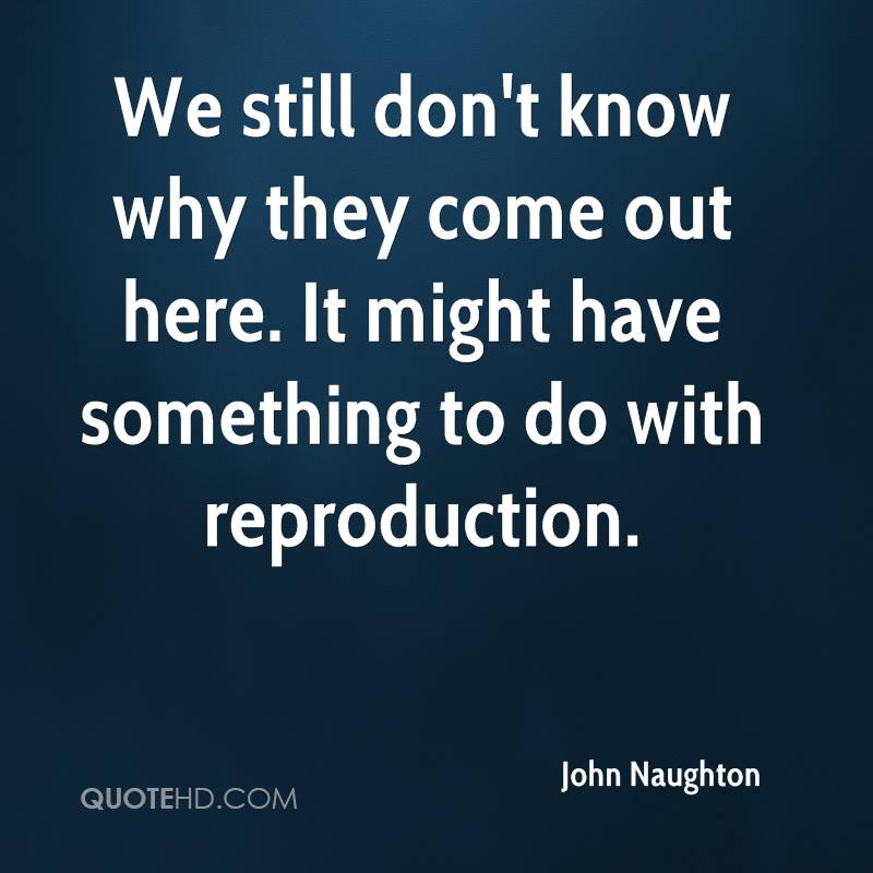 We still don't know why they come out here. It might have something to do with reproduction.
