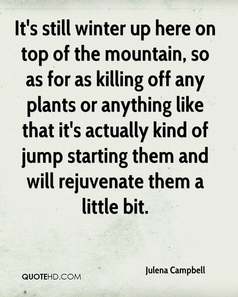 It's still winter up here on top of the mountain, so as for as killing off any plants or anything like that it's actually kind of jump starting them and will rejuvenate them a little bit.