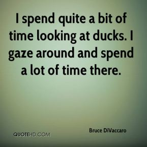 Bruce DiVaccaro - I spend quite a bit of time looking at ducks. I gaze around and spend a lot of time there.