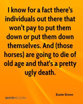 I know for a fact there's individuals out there that won't pay to put them down or put them down themselves. And (those horses) are going to die of old age and that's a pretty ugly death.