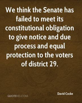 David Cocke - We think the Senate has failed to meet its constitutional obligation to give notice and due process and equal protection to the voters of district 29.