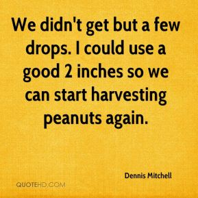 Dennis Mitchell - We didn't get but a few drops. I could use a good 2 inches so we can start harvesting peanuts again.