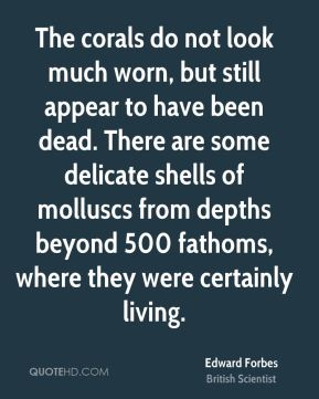 Edward Forbes - The corals do not look much worn, but still appear to have been dead. There are some delicate shells of molluscs from depths beyond 500 fathoms, where they were certainly living.