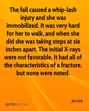 Jim Link  - The fall caused a whip-lash injury and she was immobilized. It was very hard for her to walk, and when she did she was taking steps at six inches apart. The initial X-rays were not favorable. It had all of the characteristics of a fracture, but none were noted.
