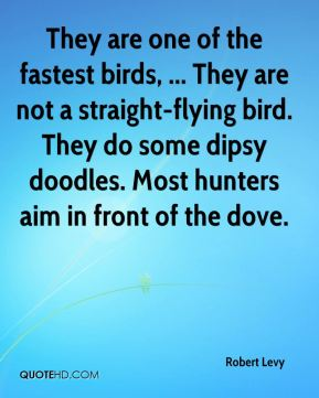 Robert Levy  - They are one of the fastest birds, ... They are not a straight-flying bird. They do some dipsy doodles. Most hunters aim in front of the dove.