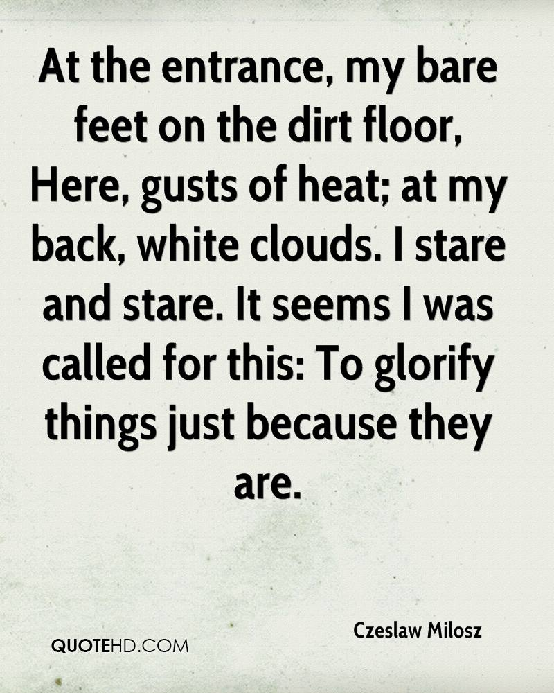 At the entrance, my bare feet on the dirt floor, Here, gusts of heat; at my back, white clouds. I stare and stare. It seems I was called for this: To glorify things just because they are.