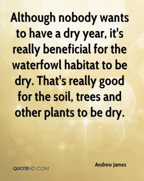Andrew James - Although nobody wants to have a dry year, it's really beneficial for the waterfowl habitat to be dry. That's really good for the soil, trees and other plants to be dry.