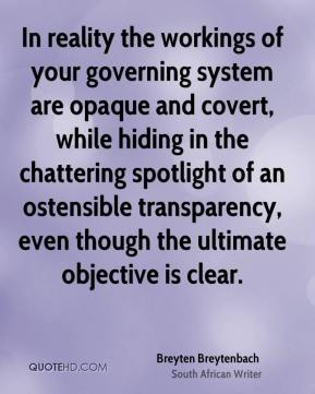 Breyten Breytenbach - In reality the workings of your governing system are opaque and covert, while hiding in the chattering spotlight of an ostensible transparency, even though the ultimate objective is clear.