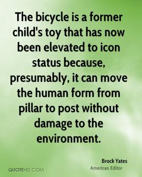 The bicycle is a former child's toy that has now been elevated to icon status because, presumably, it can move the human form from pillar to post without damage to the environment.