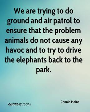 We are trying to do ground and air patrol to ensure that the problem animals do not cause any havoc and to try to drive the elephants back to the park.