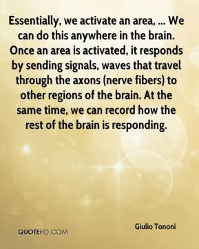 Essentially, we activate an area, ... We can do this anywhere in the brain. Once an area is activated, it responds by sending signals, waves that travel through the axons (nerve fibers) to other regions of the brain. At the same time, we can record how the rest of the brain is responding.